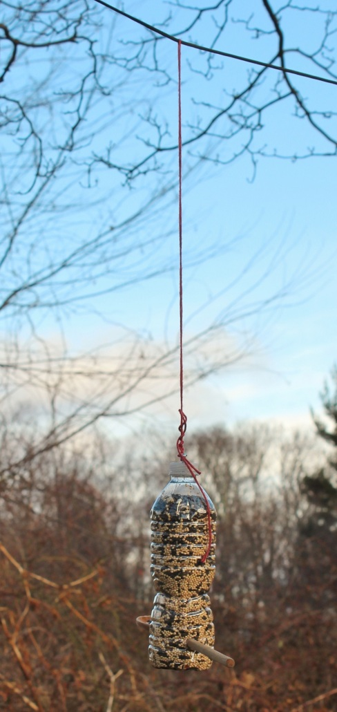 Hang the feeder, here on a string between two trees