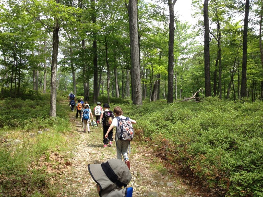 Hiking in Harriman last summer