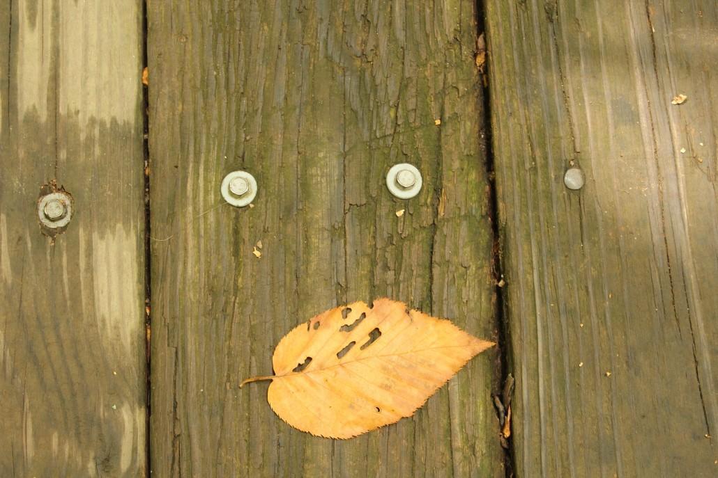 Face - leaf