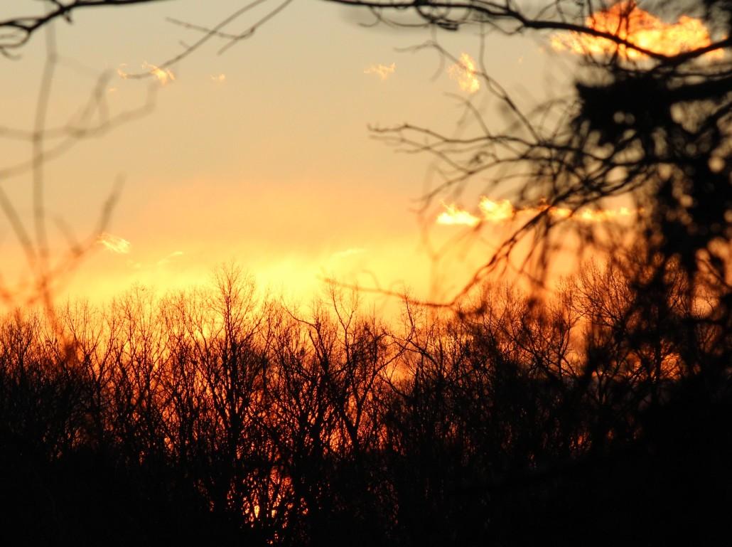 Beginning sun
