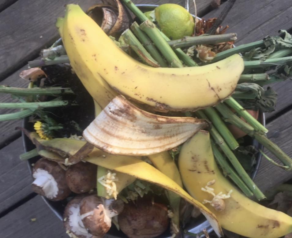 A banana peel