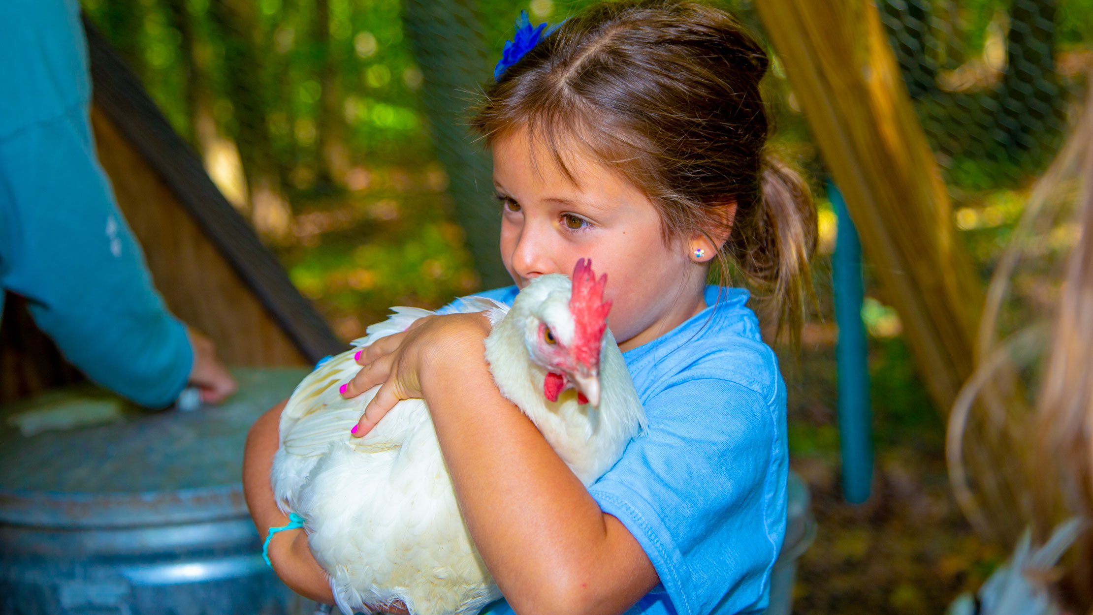 Young camper holding a chicken