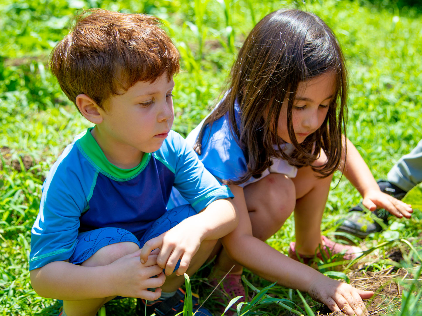young campers gardening