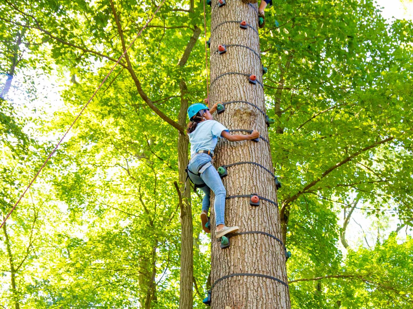 Camper climbing the climbing tree