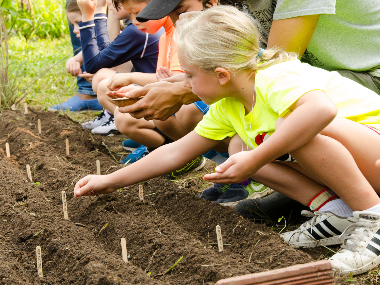 Campers planting seeds in the garden