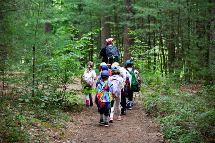 Campers walking in the woods on a hike