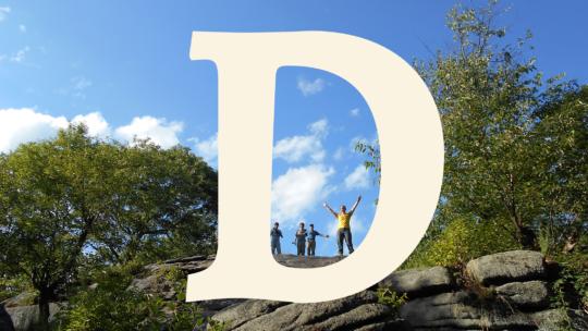 The Letter D.